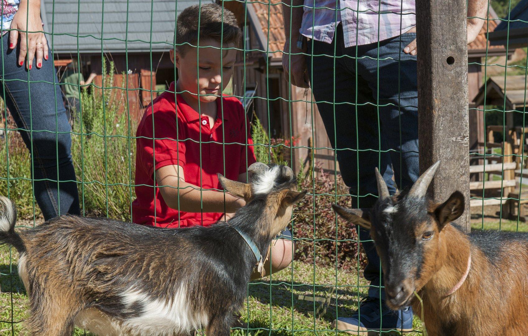 Muita diversão no Dia das Crianças no Olivas de Gramado