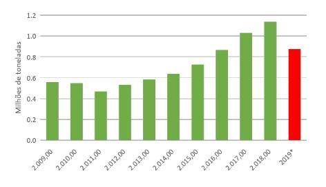 Após 8 anos, exportação de compensados de pinus e serrado de madeira deve ter retração pela primeira vez